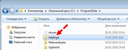Удаление папки с батниками из ProgramData