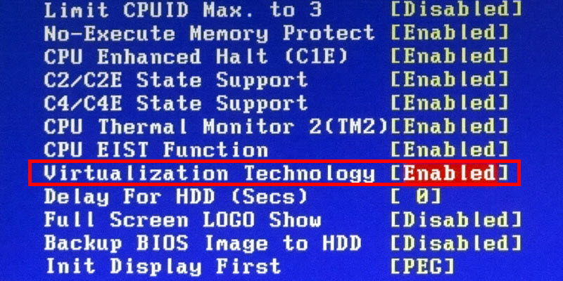 virtualization bios